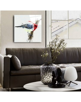 Camex Store Renkli Kuş...